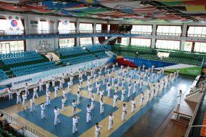 Всемирная Академия Таэквондо