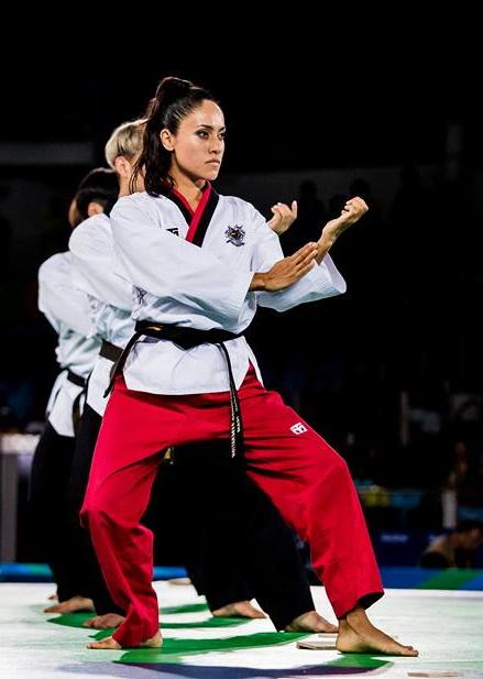 Taekwondo disciplines
