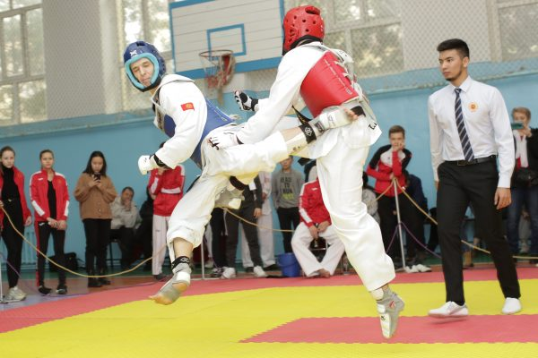 "World Taekwondo Cup of the sports club ""Manas"""