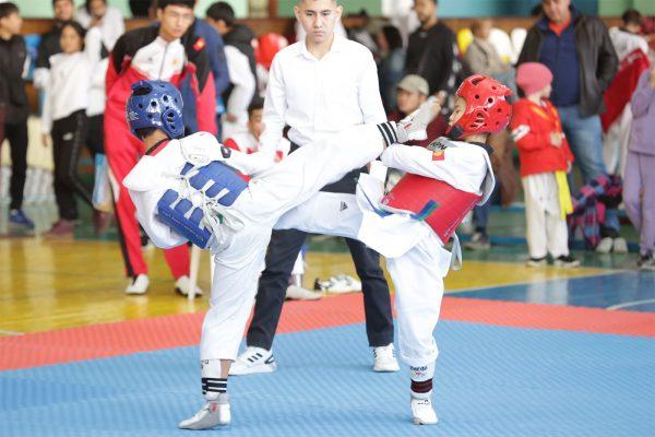 Cup of Taekwondo Federation of Bishkek city